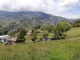 Se Vende Lote en San Cristobal para agricultura