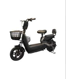 Bici Moto Eléctrica Eco Bike doble asiento