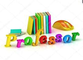 Profesor de Educación Especial Dif. De aprendizaje
