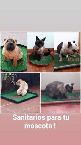 Bandejas Sanitarias para Mascotas