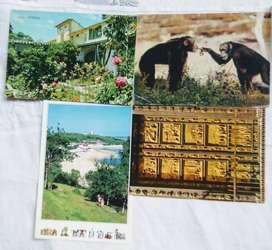 4 Tarjetas Postales de Africa,Italia,España