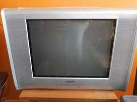 Vendo TV Sony 21 pulgadas FLAT