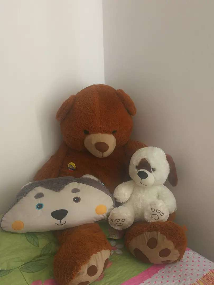 Peluches, oso y perro 0