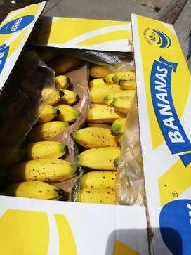 Se vende banano Urabá