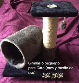 Gimnasio Pequeño Gato