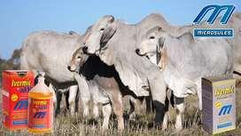 Producto Veterinario Bovinos Vacas.