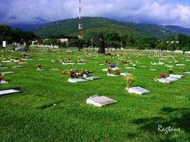 Venta de lotes cementerio la inmaculada