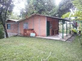 Vendo casa finca San Carlos Antioquia