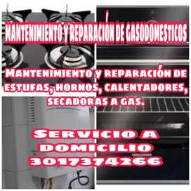 Reparación de gasodomesticos