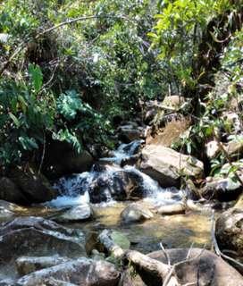Se vende 1 hectarea en san luis antioquia con aguas