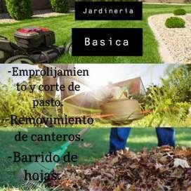 Servicio de jardineria y piletero