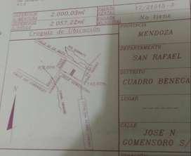 Lote 2000m2 en Cuadro Benegas. Sobre calle Gomenzoro
