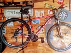 mountain bike PRO LION  KING 29 ER talle L