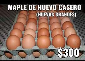 Maple de huevos caseros sin hormonas 100% frescos