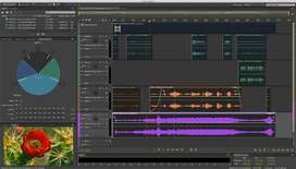 Video Curso Completo Adobe Audition