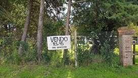 Vendo lote enorme en Villa Mugueta. 11,5 por 45mts (517,5 m cuadrados)