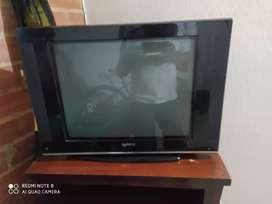 """Televisor de 21"""""""