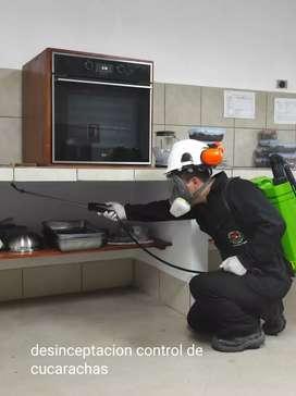 Servicios de fumigaciones Control de plagas