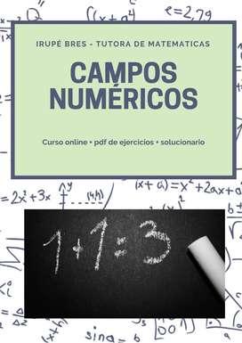 Curso Campos Numéricos ON-LINE