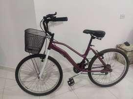 Bicicleta GW con canasta