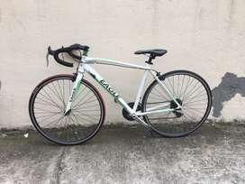 Bicicleta de Carrera Eagle
