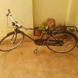 Bicicleta paseo caballero