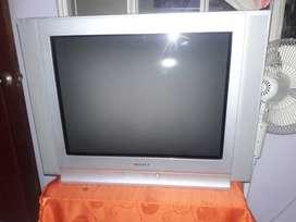 Tv Samsung Plano de 29 Pulgadas