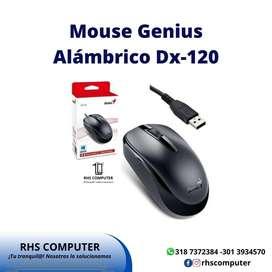 Mouse Alambrico Genius Dx-120 Usb Negro