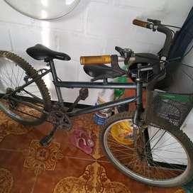Bicicleta para adulto en perfecto estado.