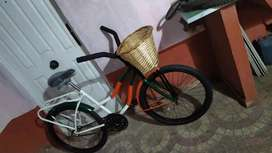 Bicicleta playero