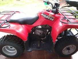Yahama big bear 250
