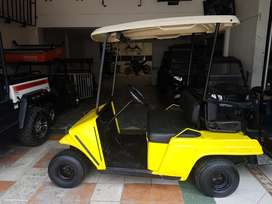 Vendo carro golf