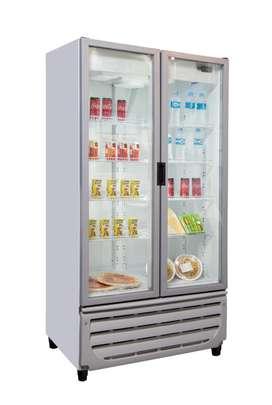 Expositora vertical 2 ptas refrigerada 750 litros