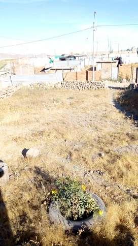 Vendo terreno  por ocacion en asociación primero de mayo Horacio zeballos socabaya Arequipa 160metros terreno plano