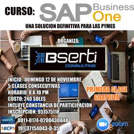 CURSO SAP BUSINESS ONE