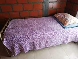 Dos camas base gemelas con el tendido de tablas completo en buen estado sin colchón.