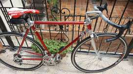 Bicicleta Alan Campagnolo