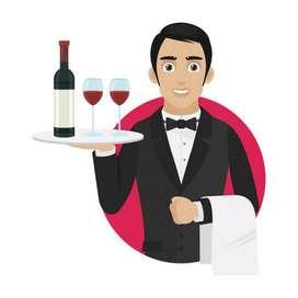 Mesero & Bartender