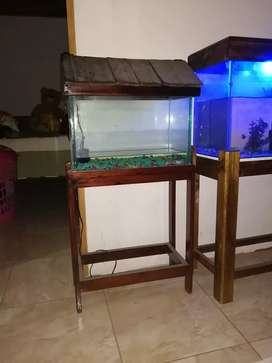 Vendo pescera de 10 galones