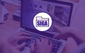 DEMOS SIGA-SIAF 2020