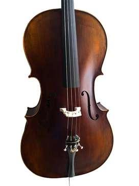 violonchelo profesional puente aubert frances con accesorios de ebano