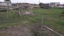 Solar en Venta  Babahoyo