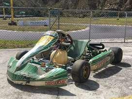 Tony Kart/motor Rotax junior 125cc