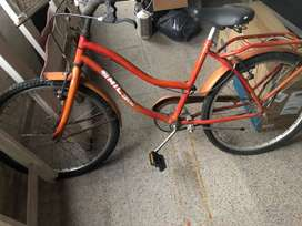 bicicleta rodado 22