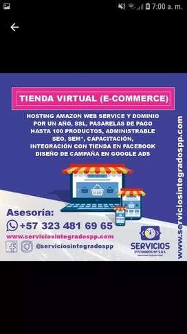 Diseño de Páginas Web y Tiendas Virtuales (E-Commerce) - WordPress