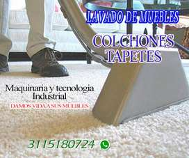 LAVADO DE MUEBLES, COLCHONE Y TAPETES,