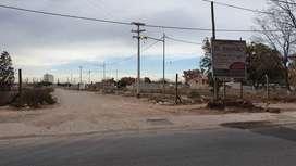 LOTEO EL AMPARO - CALLE PASCUAL SEGURA