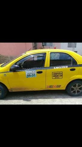 Chofer Profesional para Taxi Amarillo