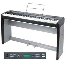 Piano Electrico Ringway Rp 30 Muy Bueno