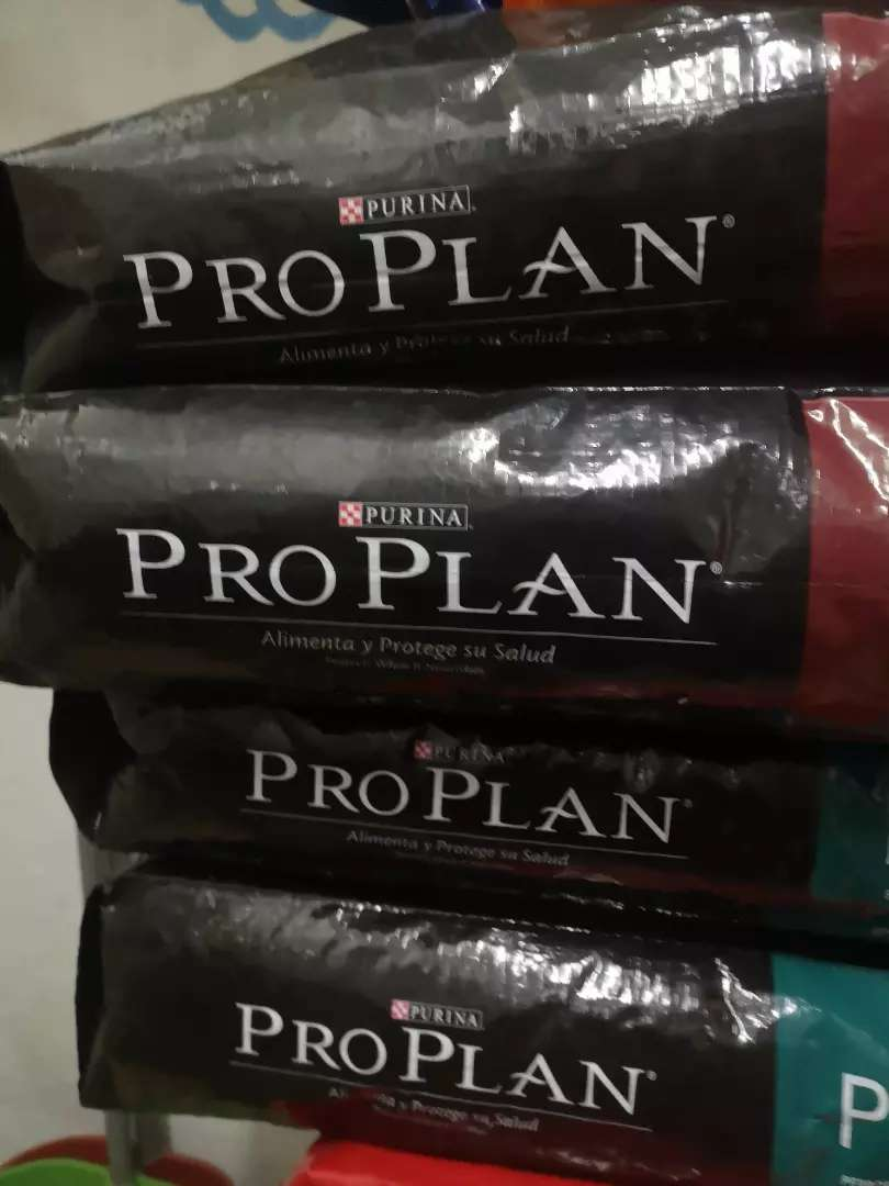 PROPLAN Y CANBO 0